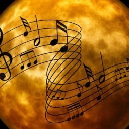 Vibration et symphonie de vie